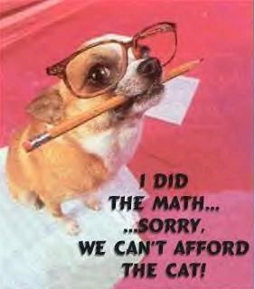 i did the math sorry we can't afford the cat