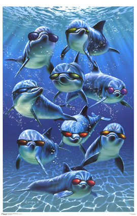 dolphins with sunglasses