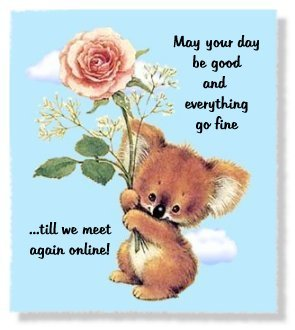 Image result for good morning koala
