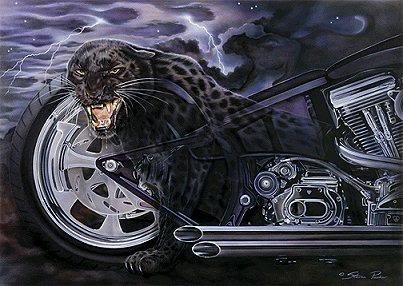 panther and motorcycle