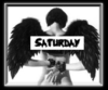 saturday dark angel