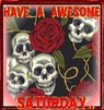 have an awesome saturday