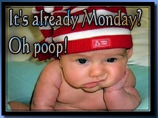it's already monday oh poop