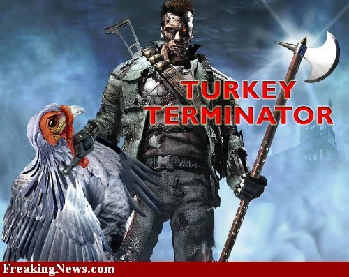 turkey terminator