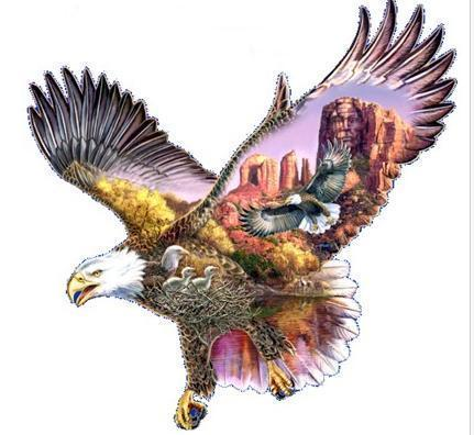 eagle art