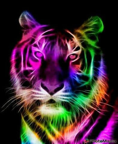 The PlColorful Tiger