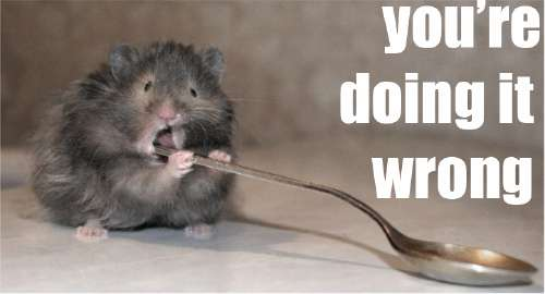 mouse eating spoon