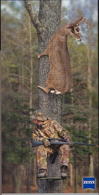 deer climbing tree with hunter waiting