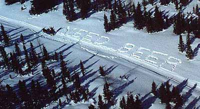 need beer written in snow