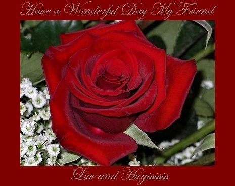 have a wonderful day my friend luv and hugs rose