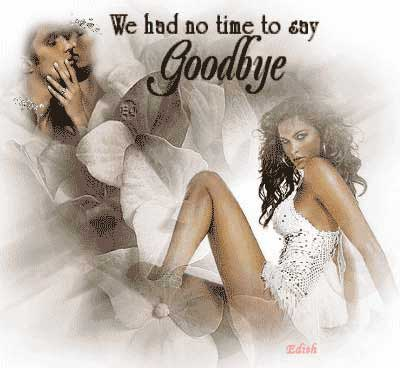 we had no time to say goodbye
