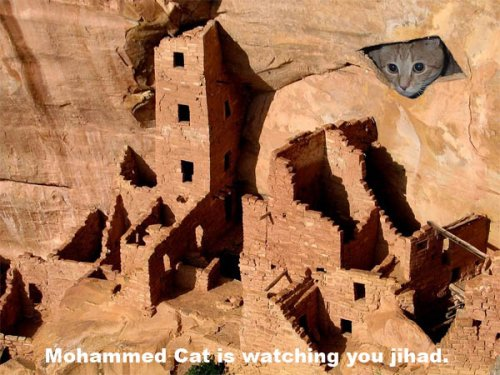 mohammed cat is watching you jihad