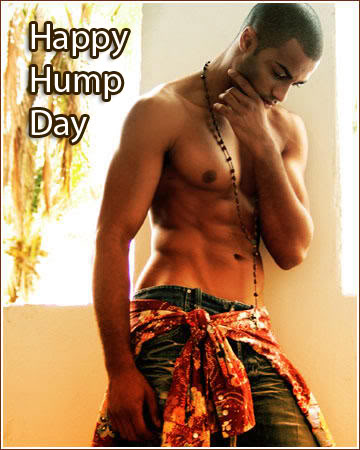 happy hump day
