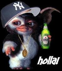 Gizmo with a beer and New York Yankees hat on