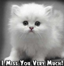 i miss you very much