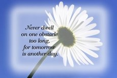 never dwell on one obstacle too long for tomorrow is another day