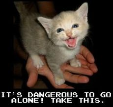 it's dangerous to go alone take this