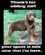 thank's for adding me your space is safe new that i'm here