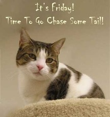 it's friday time to go chase some tail