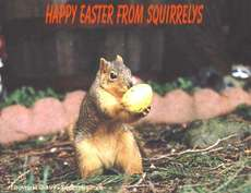 happy easter from squirrels